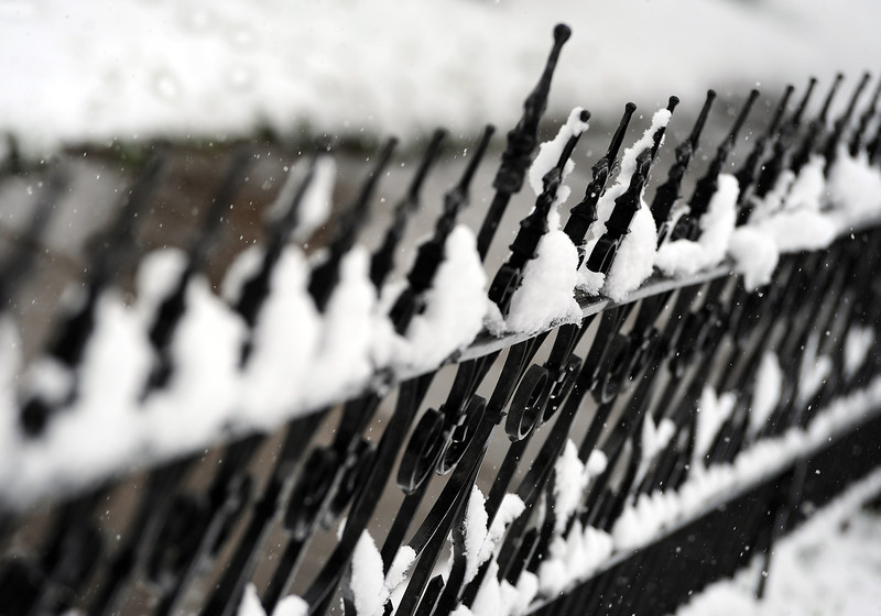 Snow sticks to a wrought-iron fence on the 900 block of north Lincoln Avenue in Loveland on Wednesday, May 1, 2013.