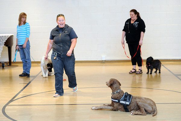 Sami Mann, middle, teaches a Level II dog therapy class with her service dog Bravo to Tisha Wernersbach, back left, with her dog Sakora and Sheryl Daniel and her dog Rufus on Thursday, May 9, 2013 at First United Methodist Church in Loveland.