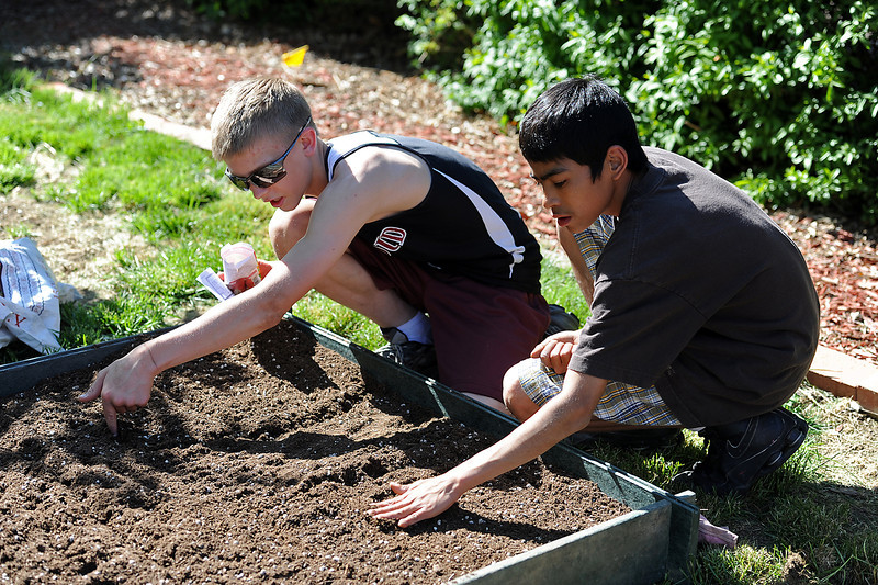 Loveland Youth Gardeners Cody Magnuson, 15, left, and Eddie Macias, 15, plant seeds in garden beds at a downtown Loveland resident's yard for the Plant a Row program on Wednesday, May 22, 2013.