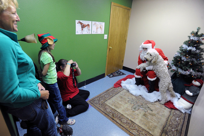 Marni Henke, left, and Haleigh Deubach, 9, look on while Nicole Deubach takes a portrait of Henke's dog named Hanna with Kyle Anderson dressed as Santa Paws during the Holiday Pix with Santa Paws event on Saturday, Nov. 24, 2012 at Hank's Pet Food Market, 2245 W. Eisenhower Blvd.