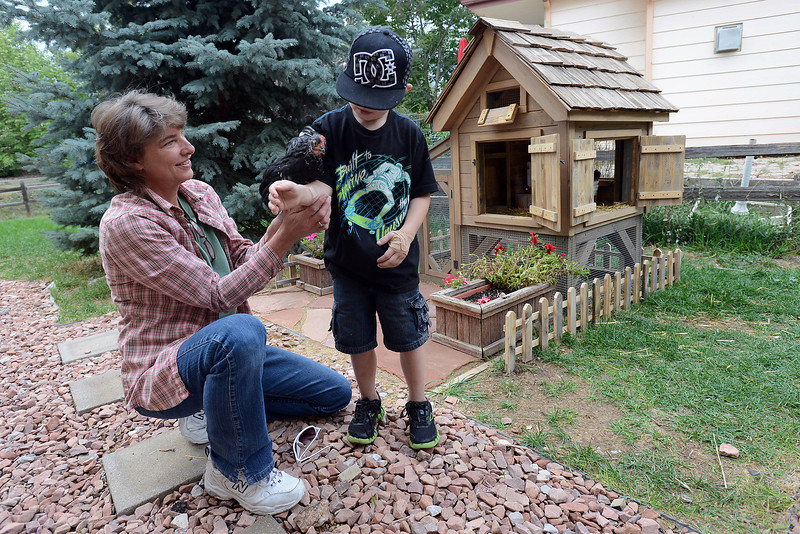 Lori Glasgow hands her chicken named Milagro to her grandson Dillon recently in the backyard of her Loveland home where she has two chickens housed in a custom-built coop that she made for them.