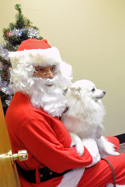Kyle Anderson, dressed as Santa Paws, holds a dog named Mr. Bigs on his lap during the Holiday Pix with Santa Paws event on Saturday, Nov. 24, 2012 at Hank's Pet Food Market, 2245, W. Eisenhower Blvd.