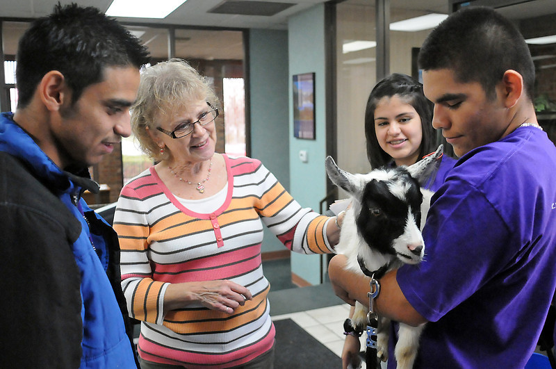 Weedin Agency insurance agent Sharon Swartz, center, pets a pygmy goat named Pistol as Mountain View High School students Rey David Mendoza, 17, left, Melissa Villalobos, 15, back, and Daniel Ramirez, 16, right, ask for a donation to their school club, Mi Raza, on Thursday afternoon. Students from the club took Pistol to local businesses seeking donations and then asked at the stop if they could recommend the next business to go to for their fundraiser.