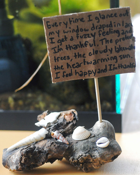 Ten-year-old Chloe Entner used driftwood and seashells to make a sculpture Saturday during a Loveland Youth Gardeners Green Adventures class and then attached a poem she wrote on a piece of recycled cardboard.