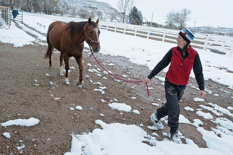 Hearts and Horses Therapeutic Riding Center equine manager Jill English takes a horse named Skittles to walk inside the arena on Thursday afternoon. The nonprofit was awarded the Outstanding Award at the Group Publishing Community Service Awards earlier in the day.
