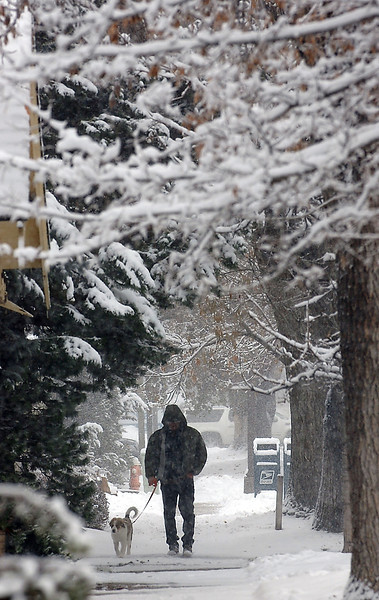"""Andrew Jackson of Loveland and his puppy Tess, a Great Pyrenees Bernese Mountain dog mix, walk down Cleveland Avenue in the snow on Wednesday. Jackson said """"She loves the snow. If we didn't do this she was probably going to eat my couch this afternoon."""""""