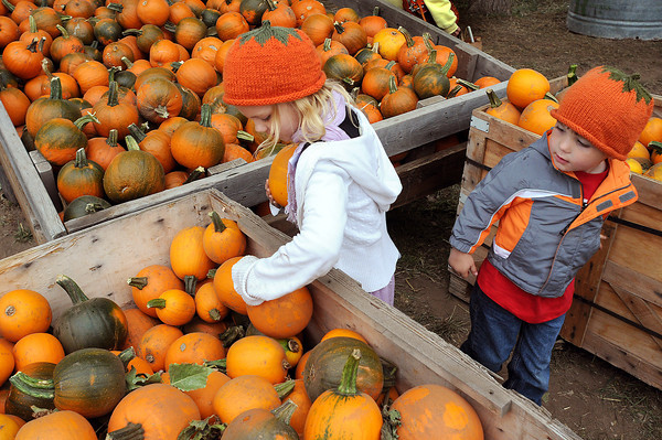 Jadynn Lewis, 6, of Johnstown and her cousing Nathan Briggs, 4, pick out pumpkins on Sunday during Market Days at Osborn Farm. From pumpkin patches to corn mazes, Lovelanders will have their pick of possibilities for fall fun this year.