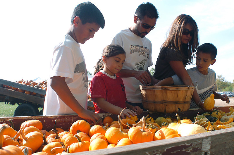 Members of the Texeira family from Loveland search for gourds Saturday during Osborn Farm Market Days. From left to right are Tommy, 13, Elizabeth, 9, Tom, Ursula and John, 11.