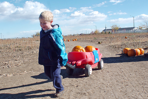 Five-year-old Levi Gulbrandson pulls a wagon to the checkout while picking up pumpkins with his family Tuesday at Jake's Farm, 3620 E. Highway 34. Jake's Farm will have pumpkins for sale through Oct. 31, open from 9 a.m. to 6 p.m., and they also have roasted chilis and firewood available for purchase.