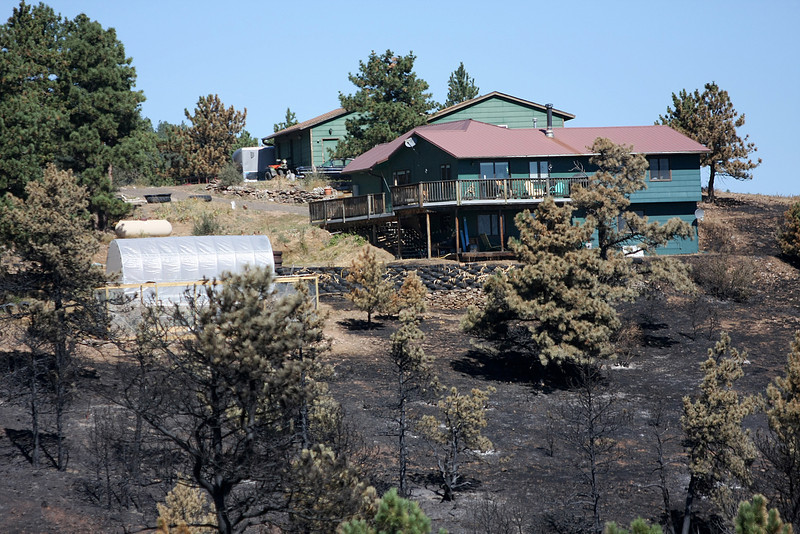 Tom and Jann Theilgaard's house was spared during the Reservoir Road Fire. The flames engulfed the trees surrounding his house and stopped at his backdoor. (Photo by Gabriel Christus)