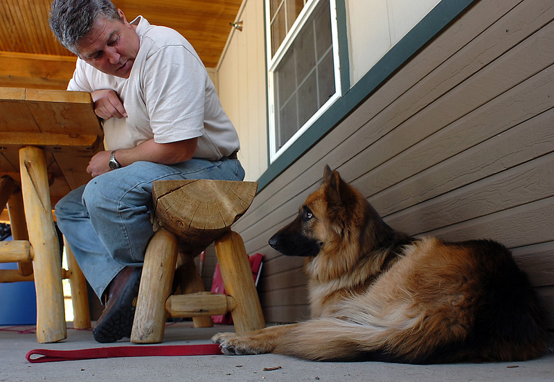 Looking a little depressed, Rosie, a German Shepherd, looks up at her owner Mark Stewart as the two relax at the Bison Visitor Center west of Loveland Wednesday. The Stewart family and their pets were evacuated from their home during the Reservoir Road fire.