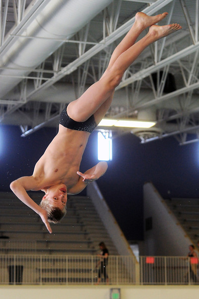 Thompson Valley High School senior Tanner Williams performs a dive during the City Meet on Wednesday, April 24, 2013 at the Mountain View Aquatic Center. (Photo by Steve Stoner)