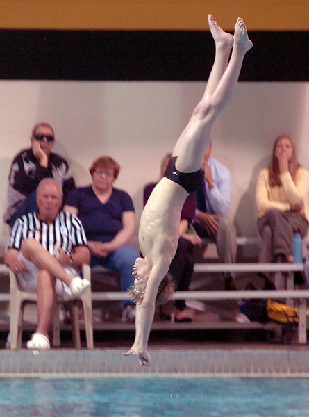 Thompson Valley's Tanner Williams dives Tuesday.