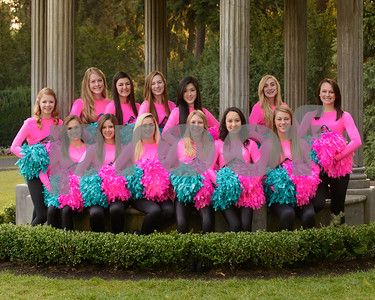 2012-2013 Tiger Drill Team