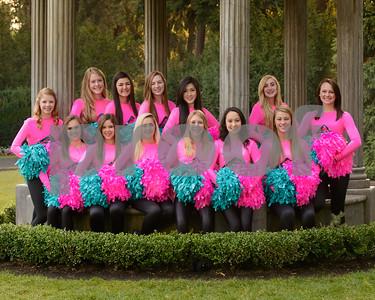 2012-2013 Tiger Drill Team