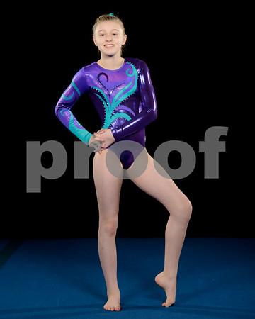 2016-17 Mountain View Gymnastics