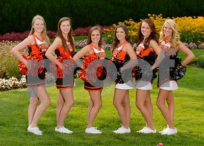 2013-14 Tiger Cheer
