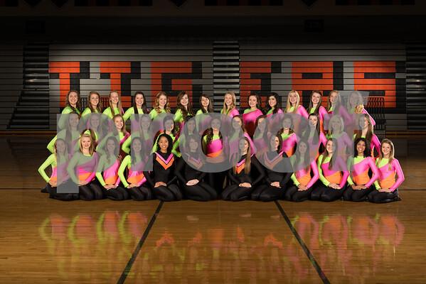 2013-2014 Tiger Drill Team