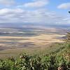 Ngorongoro Krater, Ngorongoro Crater