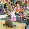 Donna Phillips from the Museum of Science in Boston brought three reptiles to the Fitchburg Public Library for the kids to see. The kids listen to Phillips as she shows them a red footed tortoise. SENTINEL & ENTERPRISE/JOHN LOVE