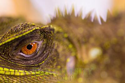 Biodiversity Group, DSC01501