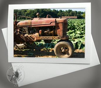 Tobacco Harvest FAR114