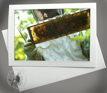 Beekeeper  and honey ANI102