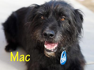 A0945394_MAC_007
