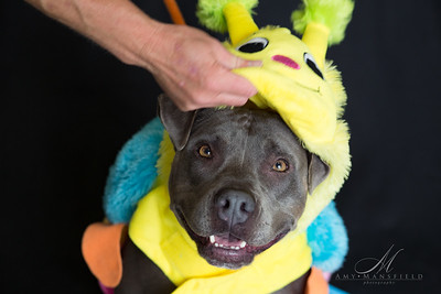A1576273 Baby-6628