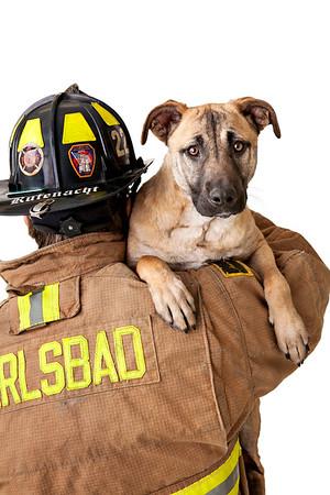 ' Firefighter Throwdown  2014' exhibit