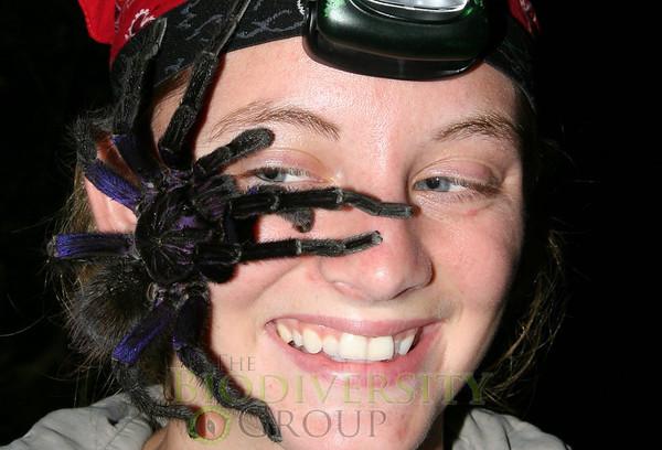 Kelly Donithan with tarantula (Theraphosidae) - Lalo Loor, Stream - HMH