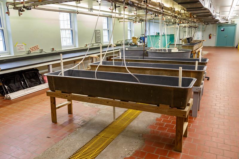 UGAMI Marine Lab