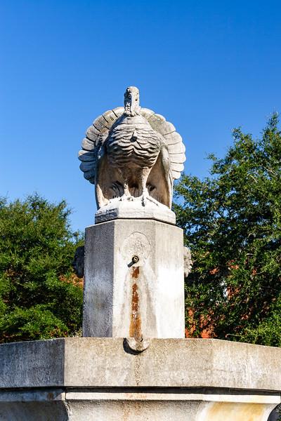 Turkey fountain