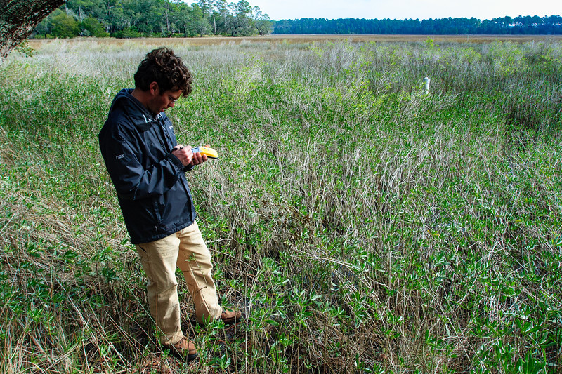 GPS data collection in the marsh