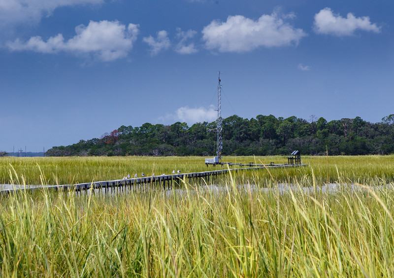 GCE eddy covariance flux tower in the Duplin River