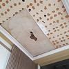All of the acoustic tiles have been removed from the hLiving Room ceiling,  as well as one 4'X8' section of plywood.  We hose a corner because this was thought to give us the best chance of finding original plaster.  The staining attests to past water leaks.