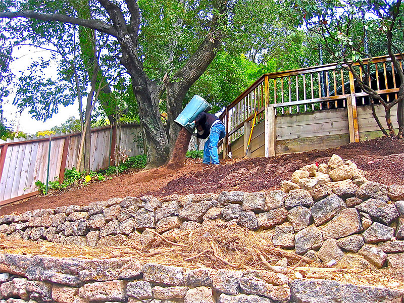 Newly terraced field stone walls and now the soil is being opened, cleared, and amended