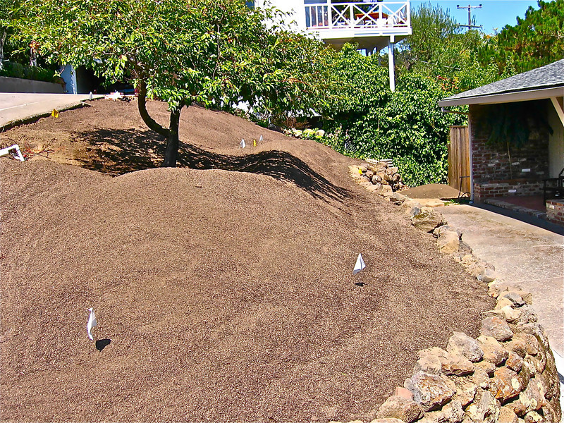 Rich soil is imported, bermed, and sculpted above an old wall.