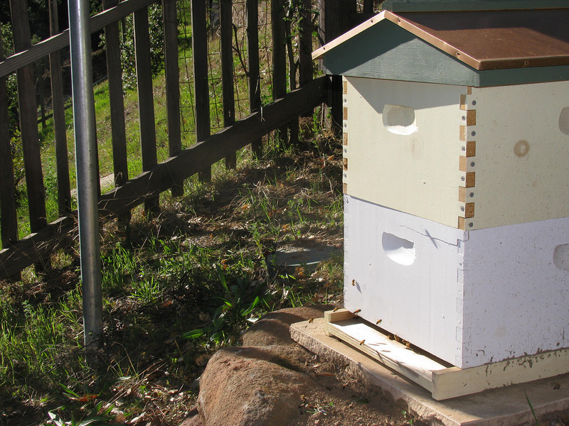 A bee hive on the property to benefit this home's flowers, fruits and vegetables as well as the neighborhood.