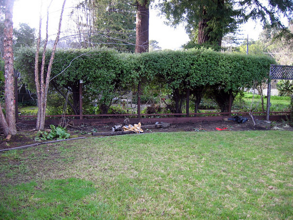 The old backyard fence has been removed and a new fence is going in.