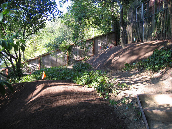 More berms for future, full planting beds.
