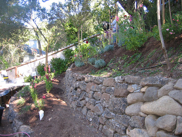 After new terraced walls are built, part way through installation of plants and irrigation.