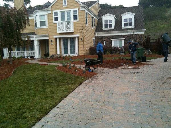 Mulching all the planting beds.