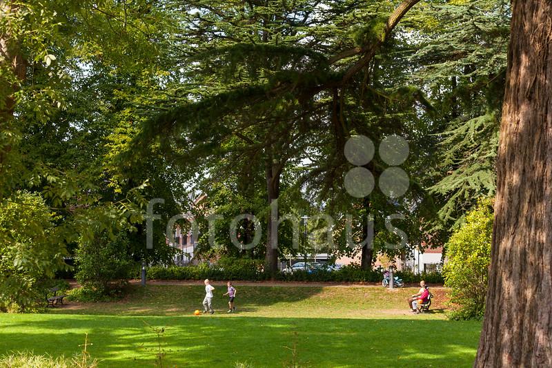 Boxgrove Gardens