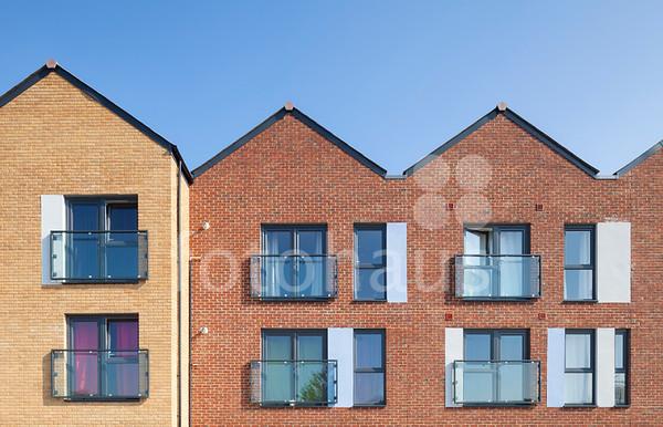 Curo Housing