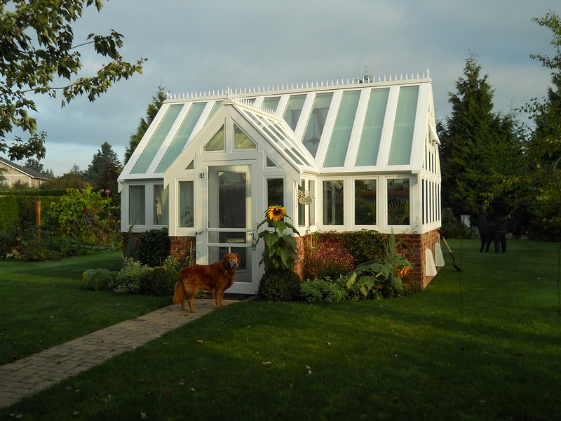 Greenhouse with Dog
