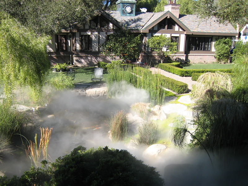 Japanese Coy Pond Cooled by Fog