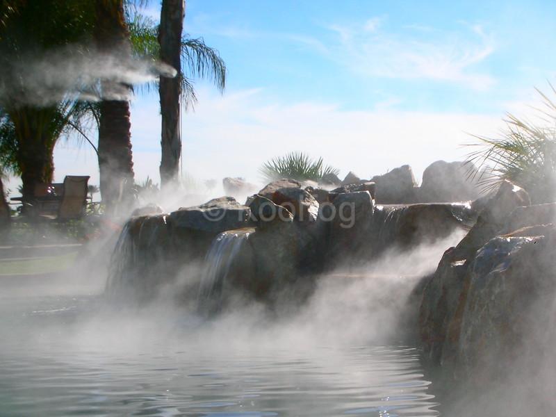 Fog & Misting Trees