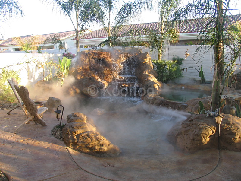 Tropical Environment for Plants and Poolside Enjoyment