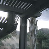 Trellis with Integrated Misting